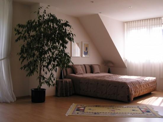 Frankfurt Zeilsheim Ferienwohnung