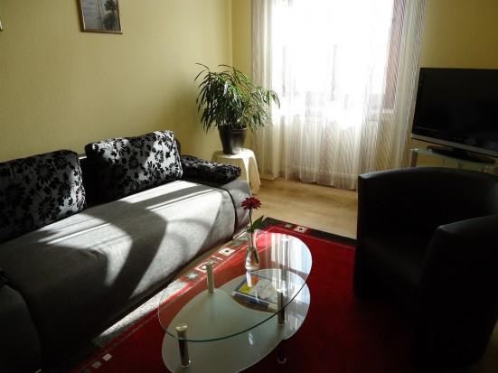 Mainz Kastel modern eingerichtete 2 Zimmer Wohnung