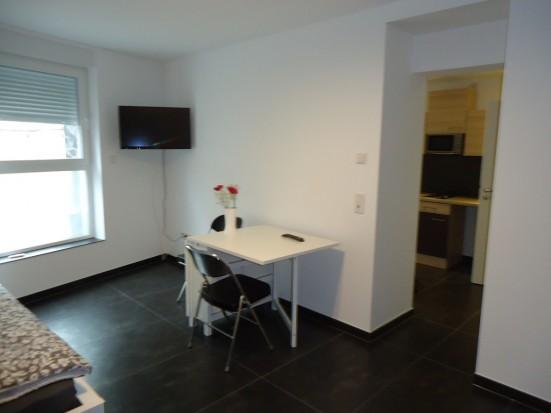 Mainz Weisenau moderne 1 Zimmer Wohnung