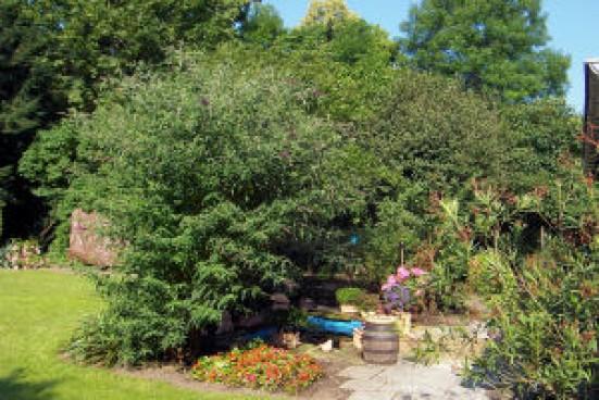Muenchen Nymphenburg Gartenmitbenutzung